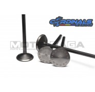 Cardinals Racing Oversized Valves - 4V Yamaha - Stage 2 - (22in/19ex)