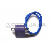 UMA Racing Performance ignition coil