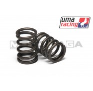 UMA Racing 22/19 Performance Valves - Honda CBR150R(K45G)/Honda