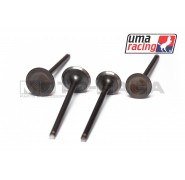 UMA Racing 22/19 Performance Valves - Yamaha T135/T150